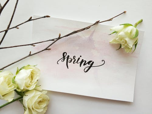 Pregnancy health center youngstown ohio spring forward blog